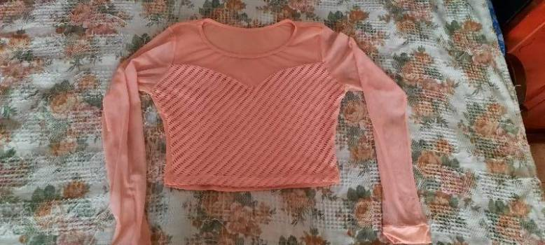 Foto Carousel Producto: Blusa rosada manga larga de malla  GoTrendier